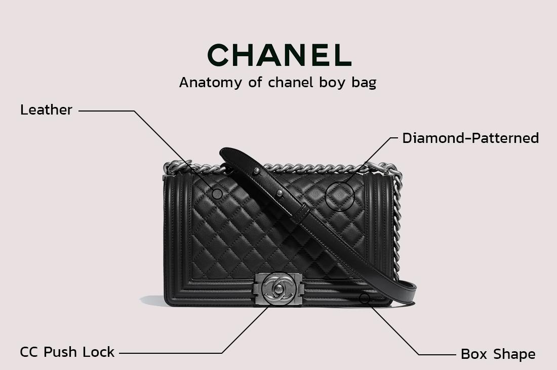chanel-boy-anatomy