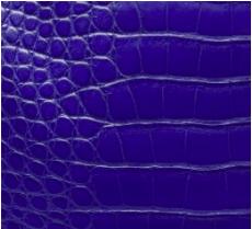 Hermes Leather Material รวมหนังแอร์เมส หนังอัลลิเกเตอร์ (Alligator)